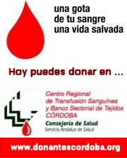 Donantes de Sangre de Córdoba